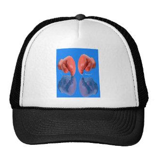 Azul que colorea fresco del guante de boxeo gorros