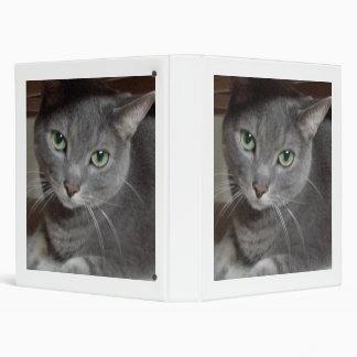 """Azul ruso del gato gris carpeta 1"""""""