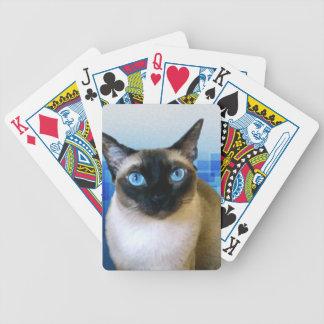 Azul siamés barajas de cartas
