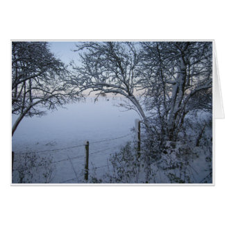 Azules de la nieve felicitaciones