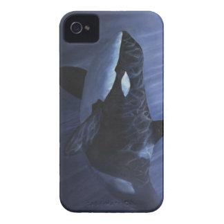 Azules de la orca - carcasa para iPhone 4 de Case-Mate