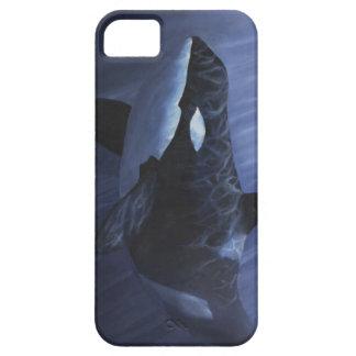 Azules de la orca - iPhone 5 carcasas