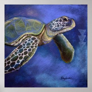 Azules de la tortuga póster