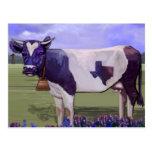 Azules de la vaca de leche postal