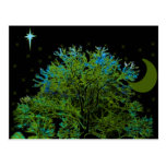 Azules del árbol tarjetas postales