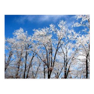 Azules del invierno tarjetas postales