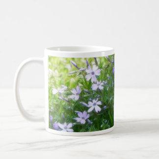 Azules del jardín de la primavera - Phlox del Taza Clásica