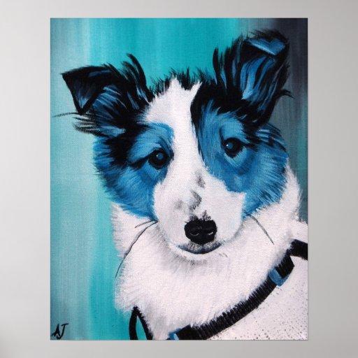 Azules del perrito del border collie póster