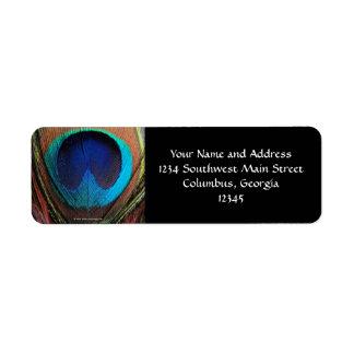 Azules ricos de la pluma macra del pavo real fotog etiqueta de remite