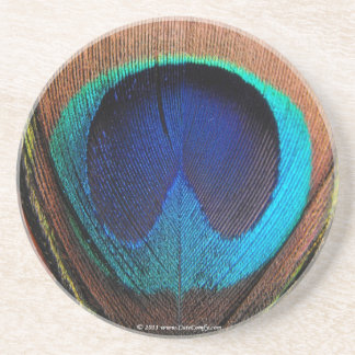 Azules ricos de la pluma macra del pavo real fotog posavasos diseño