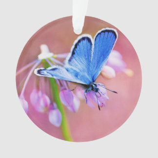 Azure Butterfly Ornament