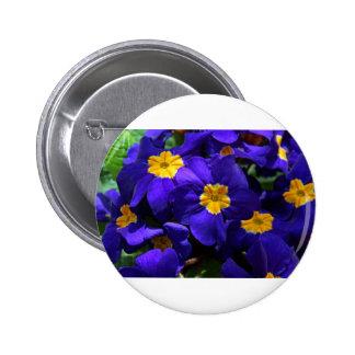 Azure Primrose Button