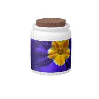 Azure Primrose Candy Jars