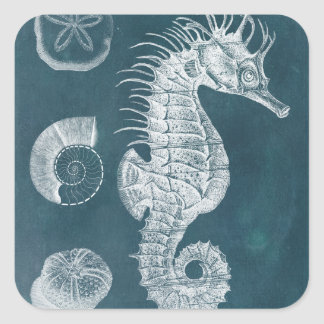 Azure Seahorse Study I Square Sticker