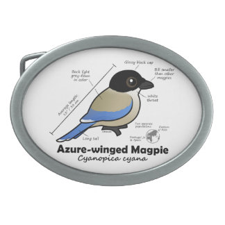 Azure-winged Magpie Statistics Oval Belt Buckle