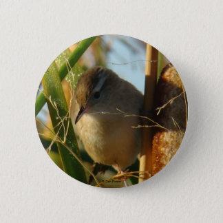 B0003 Marsh Wren button