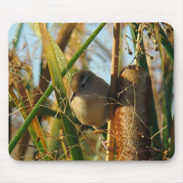 B0003 Marsh Wren Mouse Pad