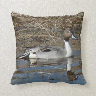 B0005 Pintail Duck Throw Pillow