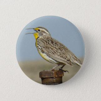 B0006 Western Meadowlark button