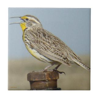 B0006 Western Meadowlark Tile