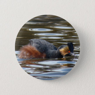 B0008 Eared Grebe Courting button