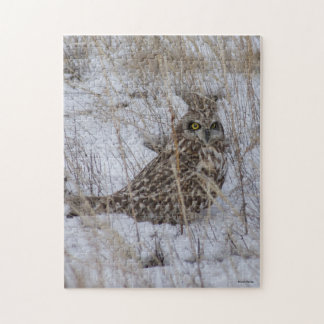 B0011 Hawk Owl Puzzles