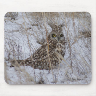 B0011 Short-eared Owl Mouse Pad