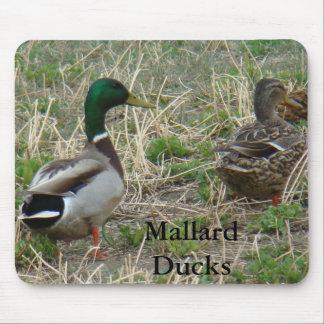 B0012 Mallard Ducks Mouse Pad