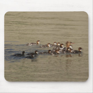 B0017 Merganser Hen and Brood Mouse Pad