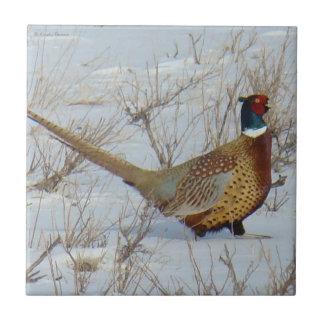 B0022 Ring-necked Pheasant Ceramic Tile