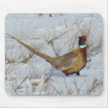B0022 Ring-necked Pheasant Mouse Pad