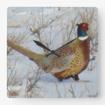 B0022 Ring-necked Pheasant Wall Clock