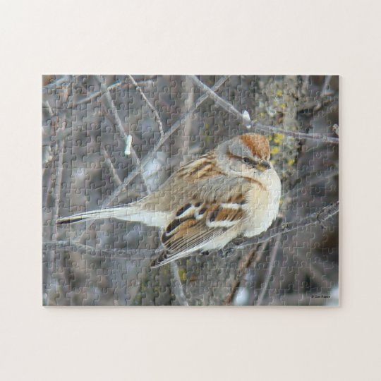 B0024 Common Sparrow Jigsaw Puzzle