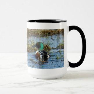 B0025 Northern Shoveler mug