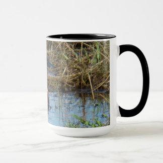 B0026 Northern Shoveler mug