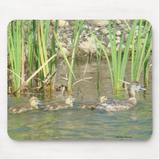 B0034 Mother Duck and Ducklings mouse pad