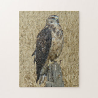 B0035 Ferruginous Hawk Jigsaw Puzzle