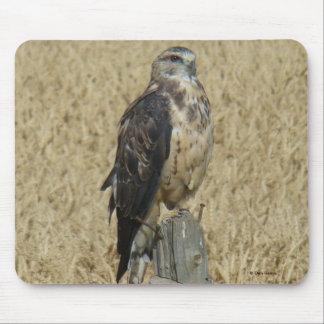 B0035 Ferruginous Hawk mouse pad