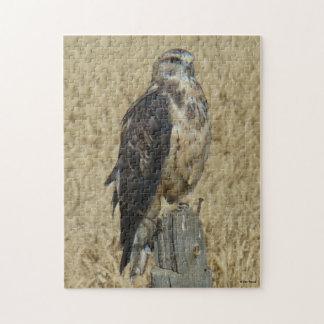 B0035 Ferruginous Hawk Jigsaw Puzzles