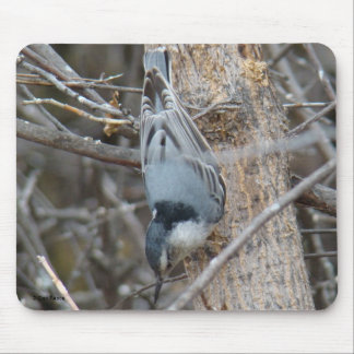 B0039 Red-breasted Nuthatch Mouse Pad