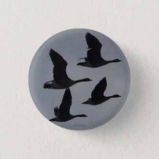 B0046 Canadian Geese in Flight Button
