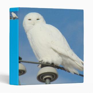 B0050 Snowy Owl Binder