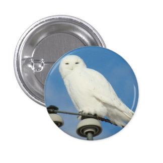 B0050 Snowy Owl Button