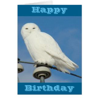 B0050 Snowy Owl Card