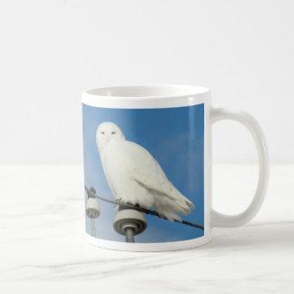 B0050 Snowy Owl Coffee Mug