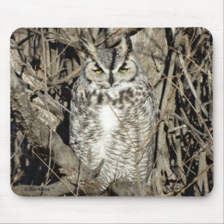 B0051 Great Horned Owl Mouse Pad