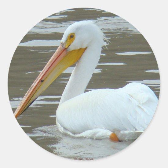 B15 White Pelican Classic Round Sticker