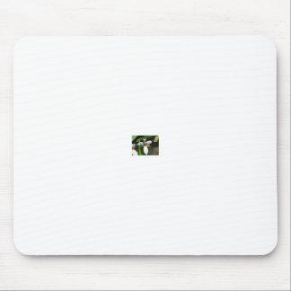 b17eva578 mouse pad