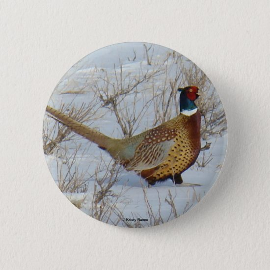 B22 Ring-necked Pheasant Button