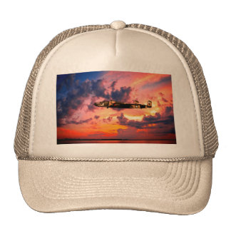 B25 Mitchell Yellow Rose Trucker Hat